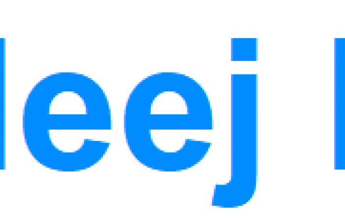 الثلاثاء 25 يونيو 2019  | البيئة السعودية: 11 شركة تتقدم للاستثمار بالثروة السمكية | الخليج الان